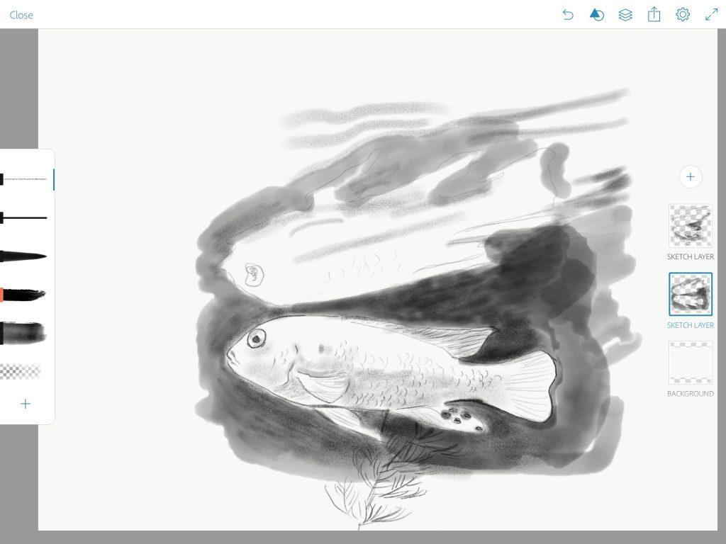 Adobe Sketch Screenshot